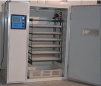 供应山东省优质的孵化机