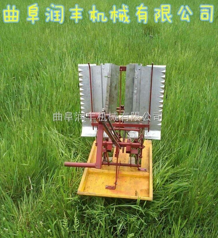 小型水稻插秧机