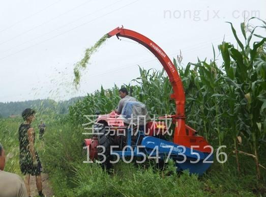 SJ-1200-鄭州秸稈粉碎收獲機報價 自走式秸稈收割一體機制造廠家
