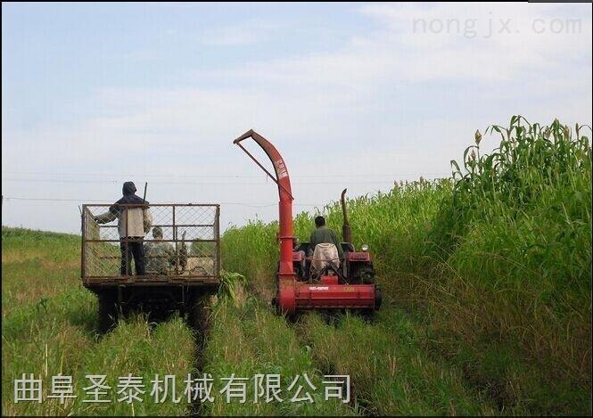 青贮秸秆收获机芦苇回收 玉米秸秆青贮收获机多少钱