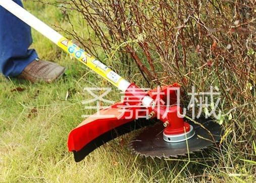 供应手推式草坪割灌机价格 圣嘉汽油割草机 轻便式除草机图片