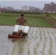 中国山东创富二手农机交易市场----二手拖拉机 二手插秧机