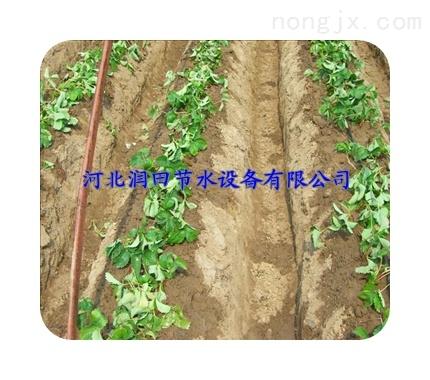 【厂家直销】农业灌溉16内镶贴片式滴灌带管