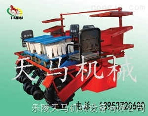 4QZ-4-移栽机简单高效,全自动移栽机
