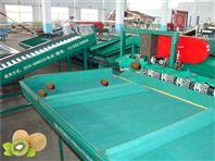 凯祥牌油桃分选机在吴山油桃产区的使用情况,吴山全自动油桃选果机