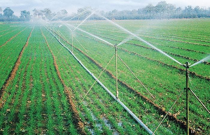 吉林玉米灌溉_铝管喷灌_玉米膜下滴灌产品报价