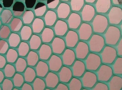 供应养殖塑料平网,塑料养殖网