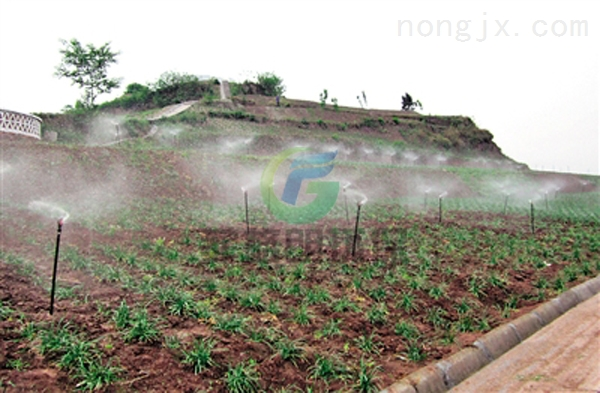 河南大田/果园/花卉/温室/蔬菜灌溉设备价格