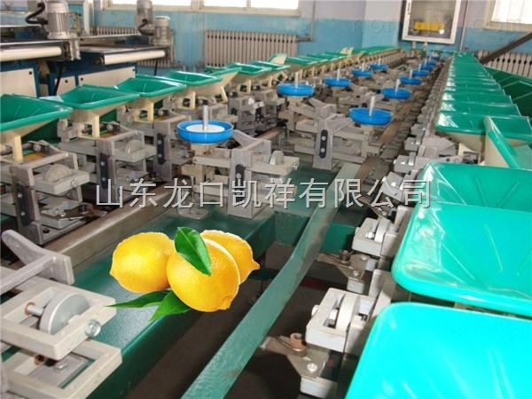 沾化冬棗自動分選分級機,台灣青棗精度高的分選機