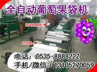 河北宣化生产全自动化葡萄的果袋机,凯祥新型万能葡萄袋机