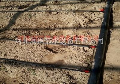河北省地下水超采滴灌项目承接