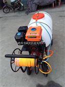 园林汽油喷雾机 自走式手推式喷雾器 农用手推式果园打药机