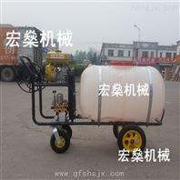 远射程喷雾器 农田喷药机 背负式汽油喷雾器