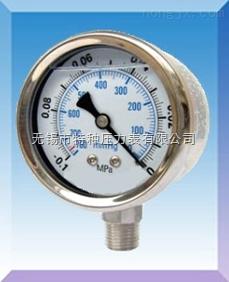 耐高温压力表系列