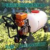 生产农用汽油动力打药机 大容量打药机  拉管式远程打药机