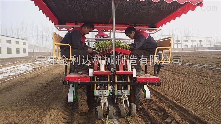 2ZBX-2-栽植机番茄栽植机番茄移栽机节约成本山东田耐尔