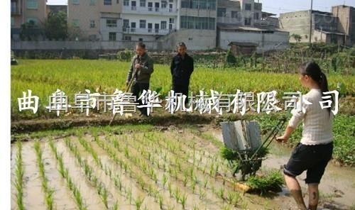 新款两行人力小型插秧机 水稻插秧机种植机