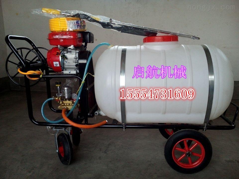 果园手推式小型打药车 新款高压汽油喷雾器 促销园林行走式喷雾器