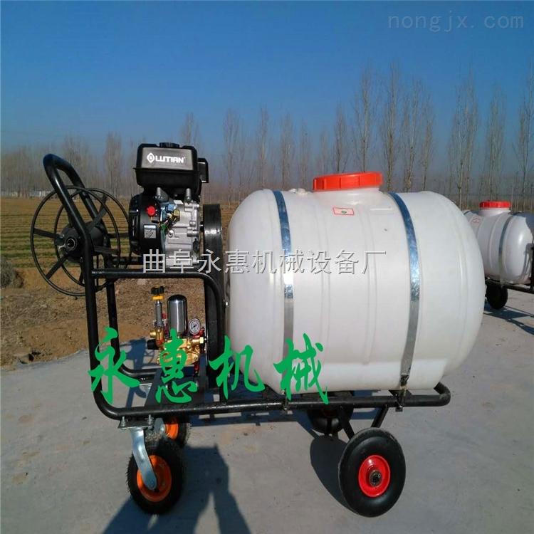 伊川县手推式果园喷雾机汽油机带动手推式多功能打药机