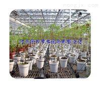 邯郸市花卉滴灌厂家专供 河北盆栽花卉种植滴箭减价