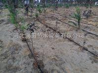 果树滴灌管厂家