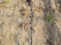 晋州市水肥一体化果树滴灌 河北石家庄核桃树灌溉