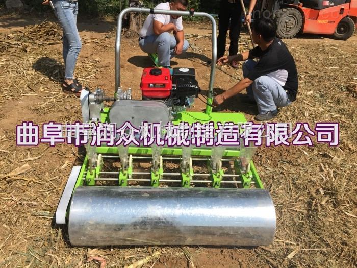 新型手推式蔬菜播種機 芹菜胡蘿卜種植機 蔬菜播種機廠家
