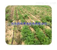 滴灌带价格河北滴灌带生产厂家