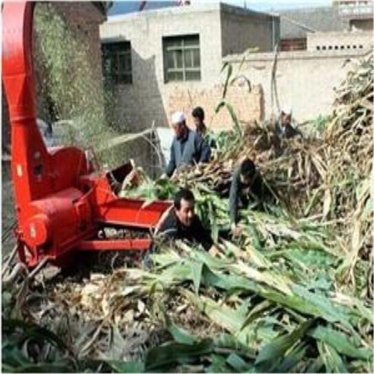 小型家用铡草机 玉米秸秆揉丝机厂家