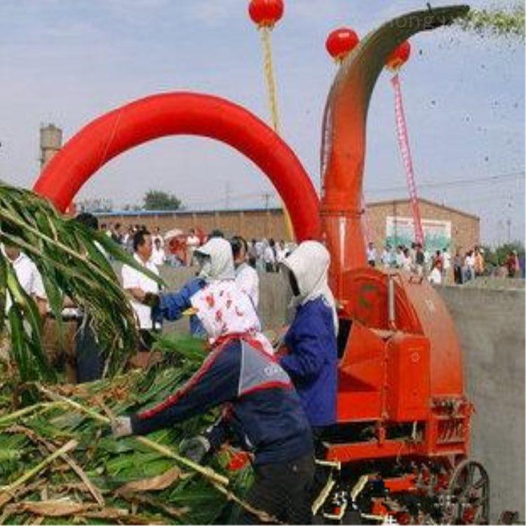 鲜秸秆揉丝机 水稻秸秆铡草机生产厂家