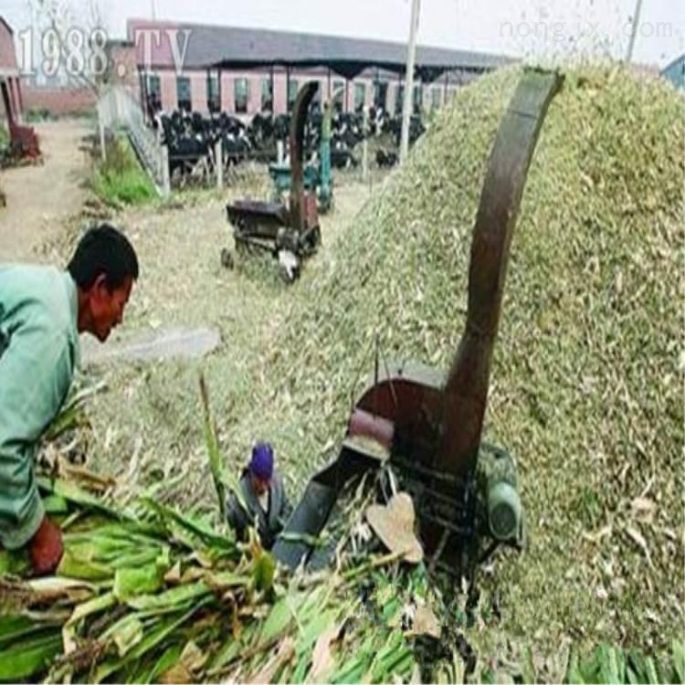 新款大型铡草机 秸秆揉丝机生产厂家