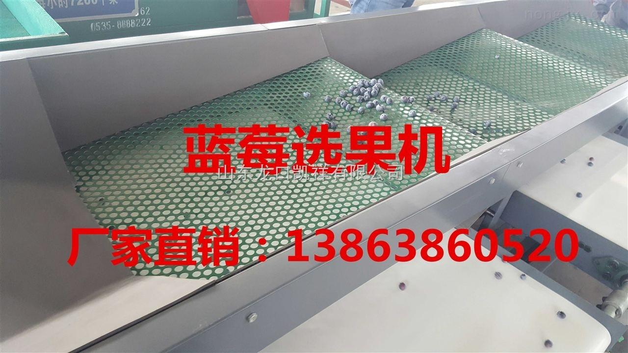 XGJ-LM-蓝莓选果机质量排行