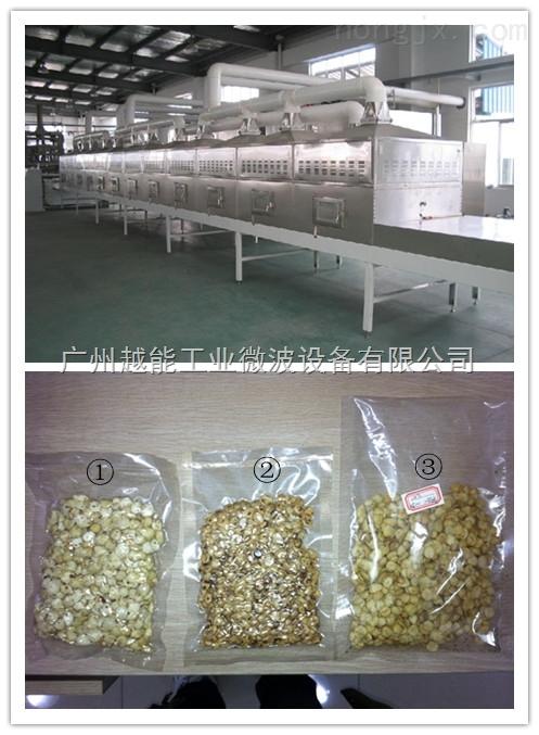 干果烘烤机 干果微波烘烤设备 专业厂家定做坚果类食品烘烤机报价