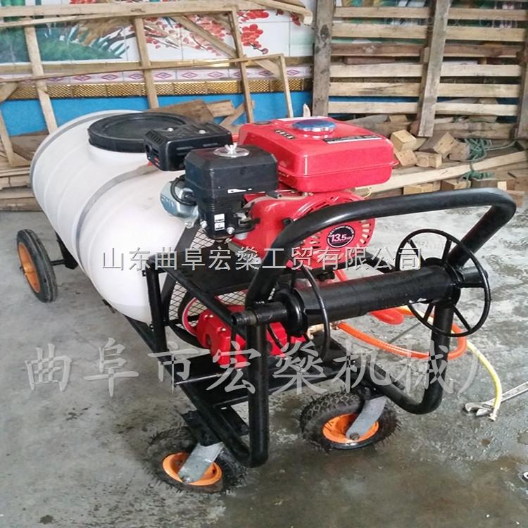 高压汽油喷雾器 手推品牌农用喷雾机
