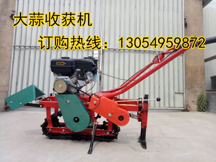 JX-SHJ-土豆收割机,大蒜多用收获机厂家直销