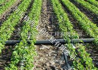 河北膜下滴灌技术设备滴水软管量大从优