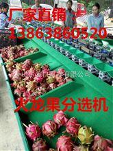 XGJ-SZZ贵州热卖火龙果选果机分拣火龙果不伤鳞片