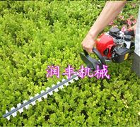 绿化带修剪绿篱机 茶树修剪机