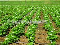 河北滴灌厂家供应蔬菜灌溉PE管 滴灌带批发