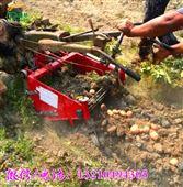 单人可收获土豆马铃薯挖掘机 根茎农作物挖掘机