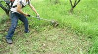 果园使用锄地机 松土锄地机 翻土除草机价格