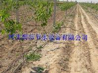 承德蔬菜滴灌管|优质农田滴水管|水肥一体化