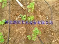 湖南长期供应蔬菜滴灌好用大田滴灌管