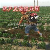 蔬菜大棚除草机 四冲程大棚果园松土机 供应园林工具割草机