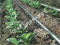 生产滴水管厂家|河北滴灌管报价滴灌管带