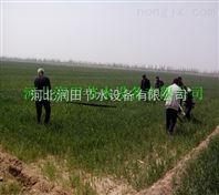 绛县微喷带生产商供货 山西大田微喷灌溉介绍说明