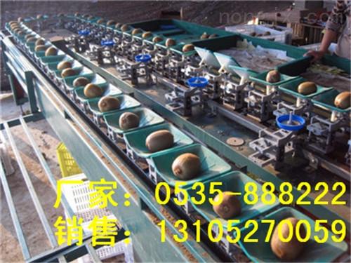 XGJ-MHT-供应称重猕猴桃分选机 高效分选猕猴桃大小 猕猴桃分选机选果机