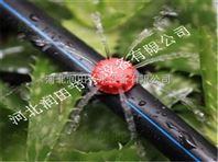 河南小管出流系统配件促销 鹿邑县滴灌毛管加厚不加价