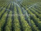 齐全自贡市大喷头优质批发 四川水肥一体化喷灌器材批发
