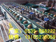 XGJ-MHT供应高效智能猕猴桃选果机 分选猕猴桃大小的机器